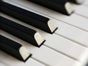 Piano keys waiting for a performance.